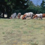Carolina Longhorns 9x12