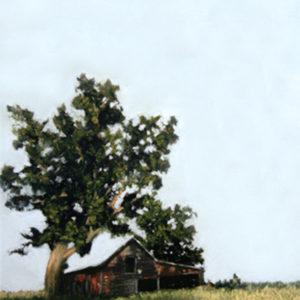 Shaded Barn 13.3x20
